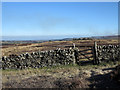 NZ0211 : Gate in dry stone wall on Scargill Low Moor by Trevor Littlewood