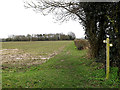 TM2397 : Palmer's Lane bridleway to The Green by Adrian Cable