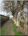 TL3746 : Meldreth: footpath by the churchyard by John Sutton