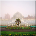 J3372 : The Palm House, Belfast by Rossographer
