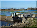 "TF3801 : The ""second"" bridge on Guyhirn Wash - The Nene Washes by Richard Humphrey"