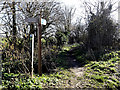 TM3689 : Angles Way footpath to Castle Road by Adrian Cable