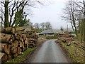NT1254 : Log piles at Baddinsgill by Alan O'Dowd