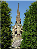 SO9098 : The spire of St Mark's Church in Chapel Ash, Wolverhampton by Roger  Kidd