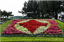 SN5981 : Floral display by Ian Capper