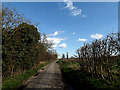 TM3690 : Low Road, Mettingham by Adrian Cable