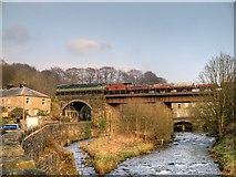 SD7915 : Brooksbottoms Viaduct, East Lancashire Railway by David Dixon