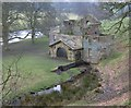 SK2568 : Derelict mill in Chatsworth Park by Russel Wills