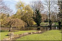 TQ4666 : Flooding, Priory Gardens by Ian Capper