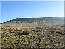 SD7942 : Downham Moor by John Slater