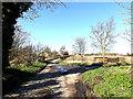 TM3690 : Deer Row, Mettingham by Adrian Cable