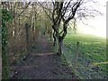 TQ3855 : Footpath beside Whistlers Wood by Russel Wills