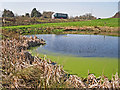 NY4159 : Pond by the M6 by Rose and Trev Clough