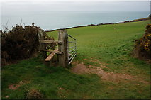 SX5746 : Start of the path down to Wadham Beach by jeff collins
