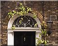 TQ3182 : Fanlight and foliage, Sekforde Street by Julian Osley