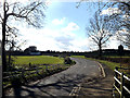 TM3592 : Yarmouth Road, Ellingham by Adrian Cable