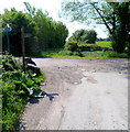 ST4686 : Junction on the Wales Coast Path on Caldicot Moor by Jaggery