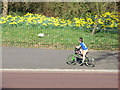 TQ3877 : Young cyclist in Greenwich Park by Stephen Craven
