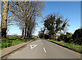 TM3591 : Yarmouth Road Priority by Geographer