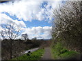 SO8652 : The arrival of spring blossom by Andrew Darge