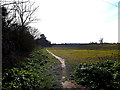 TM4461 : Bridleway to the B1353 Aldringham Lane by Adrian Cable