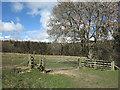 NZ1937 : Route of footpath between fields by Trevor Littlewood