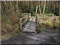 SU8163 : Footbridge, Heath Pond by Alan Hunt
