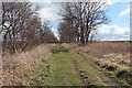 SK9636 : Green Lane (track) by J.Hannan-Briggs