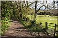 TQ2351 : Clifton's Lane by Ian Capper