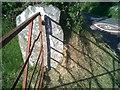 SN5347 : Ordnance Survey Benchmark - Llanwnnen, Castell-du by N Scott