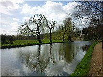 SU9948 : River Wey out of Guildford by Carroll Pierce