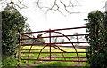 J4267 : Field gate, Ballyallyoly near Comber (2) by Albert Bridge