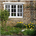 SK8314 : Cottage garden at Whissendine by Alan Murray-Rust