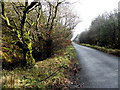 H1472 : Road near Tullylack by Kenneth  Allen