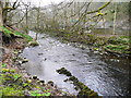 SE0420 : Remains of wall alongside the River Ryburn by Humphrey Bolton