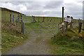SN7567 : Start of bridleway by Nigel Brown