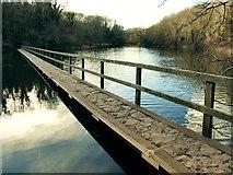 SR9694 : Footbridge on the west arm of Bosherston Lily Ponds by Nigel Davies
