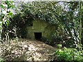TG2733 : WW1 pillbox concealed by undergrowth by Adrian S Pye