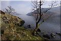 NY3818 : Ullswater shore by Ian Taylor