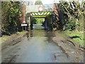 SU5885 : Floods at the Bridge by Bill Nicholls
