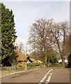 ST5575 : Thatched cottage, Sneyd Park by Derek Harper