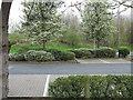 SP0373 : Landscaping at Hopwood Park Services by Trevor Littlewood