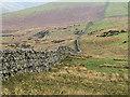 NY6533 : Drystone wall near Kirkland Beck by William Starkey