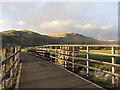 NS8595 : Bridge on cycle route NCN768 by William Starkey