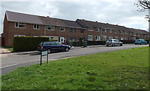ST2896 : Houses in The Rise, West Pontnewydd, Cwmbran by Jaggery