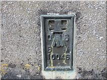 ST8026 : Ordnance Survey Flush Bracket 10046 by Peter Wood
