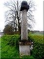 SU8394 : The Pedestal by Bikeboy