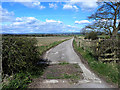 NZ1228 : Driveway to Tumbleweed House by Oliver Dixon