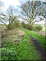 NZ1727 : Footpath to Etherley Incline by Oliver Dixon