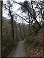 SX5083 : Path above Lydford Gorge by David Smith
